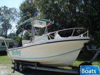Dusky Marine 227