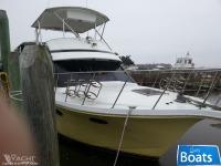 Bluewater 54