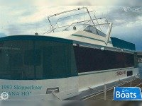 Skipperliner 48