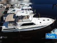 Ocean Yacht 55