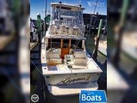 Ocean Yachts 32