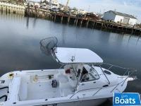 Sea Fox 257 Walkaround