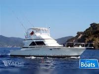 Bertram Yacht 43 Convertible