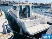 Faeton 930 MORAGA