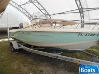 Scout Boat 175 Sportfish