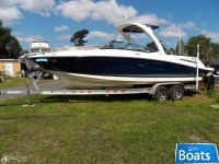 Sea Ray Select 250