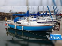 Canvey Island Boats Wing 25