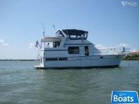 TransWorld Trawler