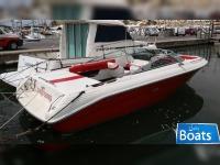 Sea Ray 240 BR
