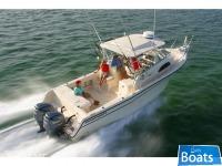 Grady White 300 Marlin