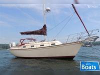 Island Packet Yachts