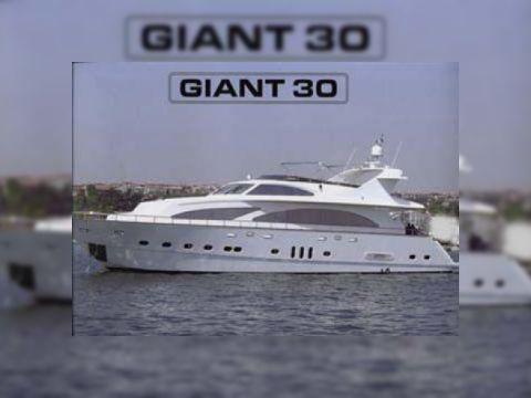 Giant 2006