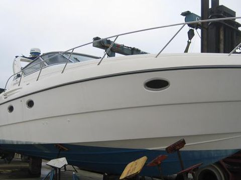 Coral Legacy 31