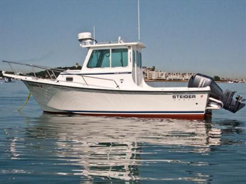 Steiger craft 21 chesapeake for sale daily boats buy for Used steiger craft for sale