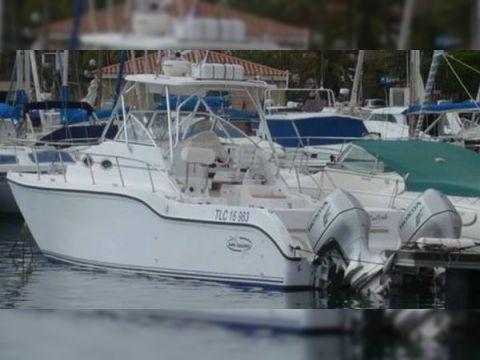 Baha Cruisers 296