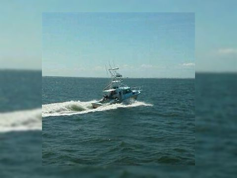 Privateer 31