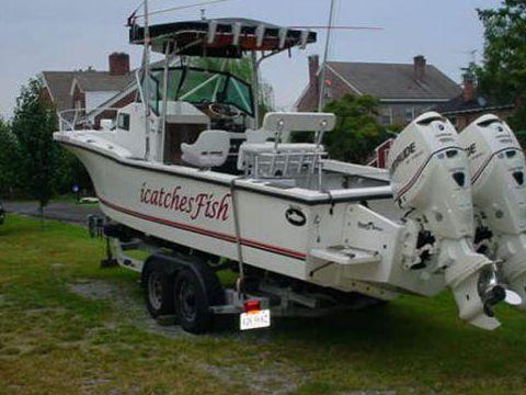 Dusky Marine 256
