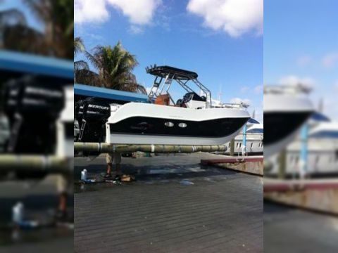 Hydrofoil Power Catamaran