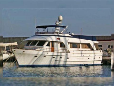 Searanger 62