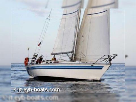 Alb Sail 35