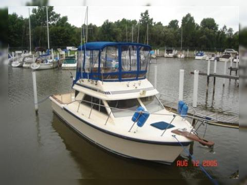 Chris Craft 315 Commander For Sale Daily Boats Buy