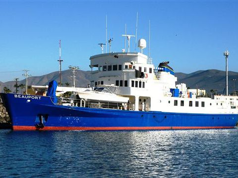 Collingwood Expedition Trawler