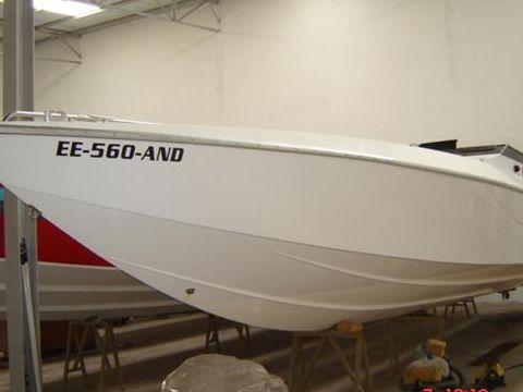 Cougar 38