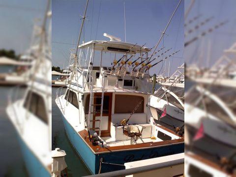 Dawson Yachts Convertible