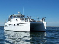 Endeavour Catamaran Trawler Cat 44