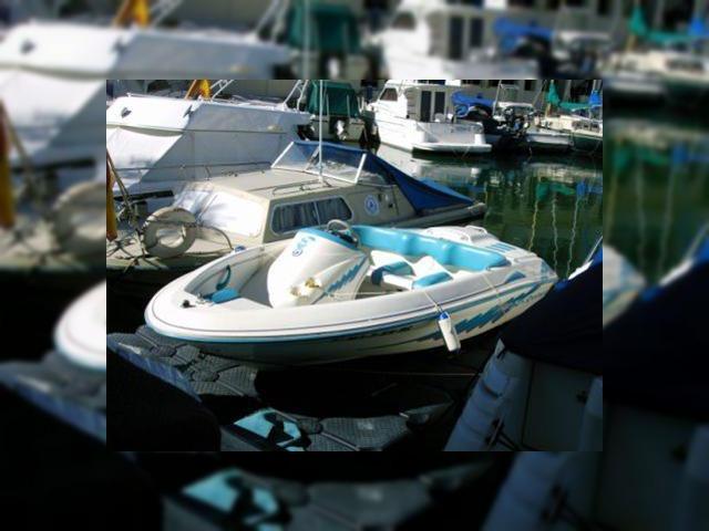 Buy Sea Ray Sea Rayder F14 | Sea Ray Sea Rayder F14 for sale