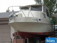 Skipjack Cruiser