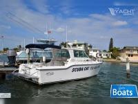 Baha Cruisers 290 King Cat