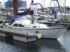 Kings Cruiser 29 (available)