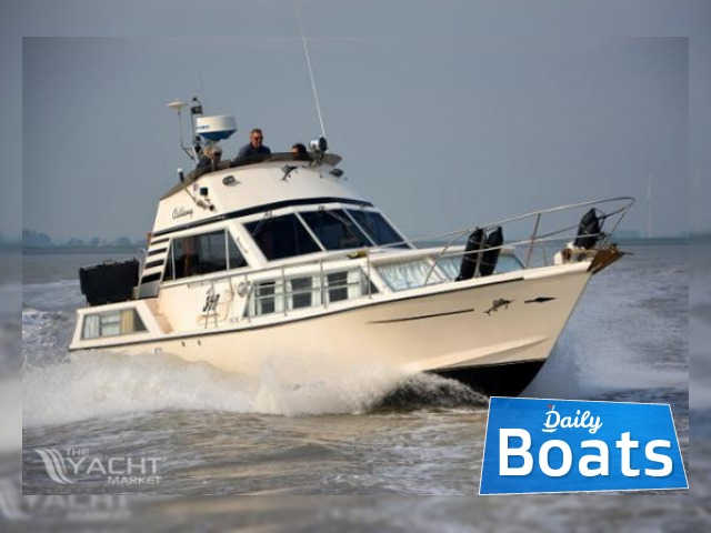 Moonraker 36 Flybridge for sale - Daily Boats | Buy, Review