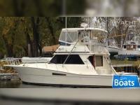 Viking Yachts Convertible
