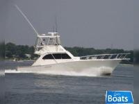 Post Yachts Convertible